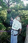 Canopy tour cable between platforms